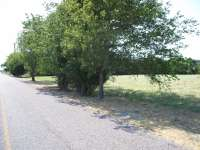 19 Acres in Celina